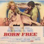 Zomergasten 2013: Mijn derde fragment: Born Free: naar de natuur leren kijken