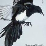 Eerste zin: Onheilig – Roos van Rijswijk