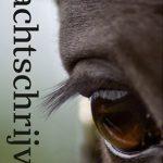 Recensie: Nachtschrijver – Jannie Regnerus