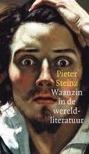 Waanzin in de wereldliteratuur - Pieter Steinz