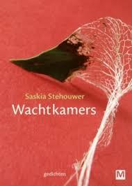 Wachtkamers - Saskia Stehouwer